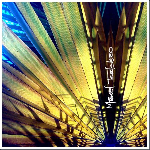sombras exoticas-1