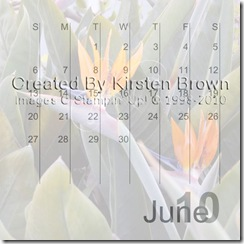 2010 Calendar12-013