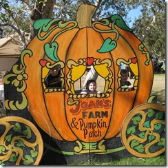 Joan's-Pumpkin-Patch-004