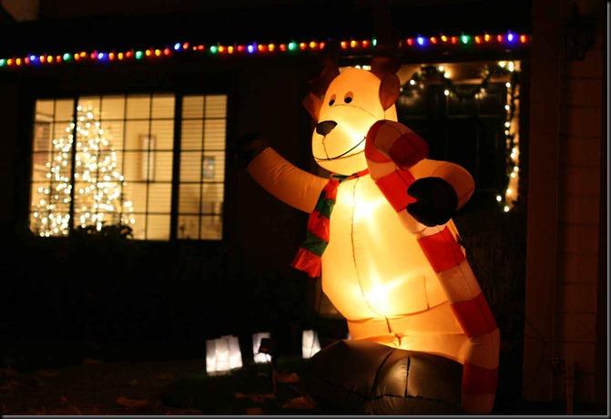Our-Christmas-Lights-025