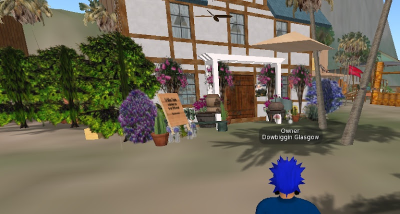 Te 'Moc Team 's Pub in Second Life