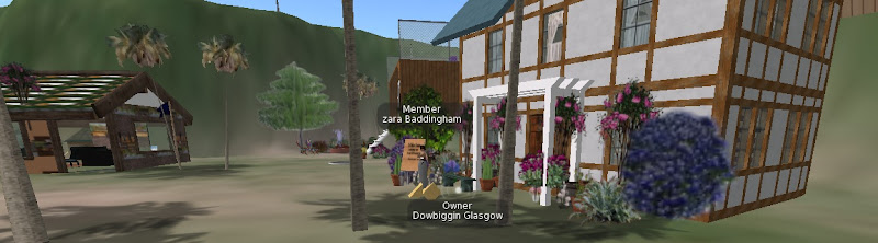 Working on our pub in Second Life