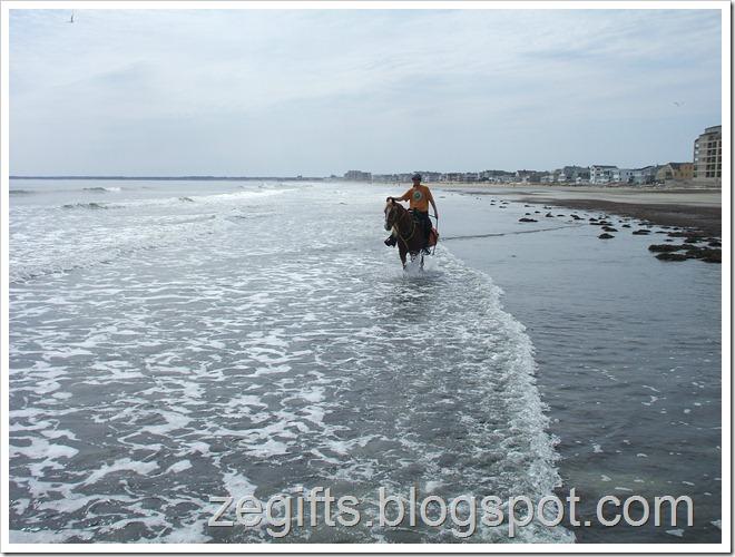 April10-Beach 015
