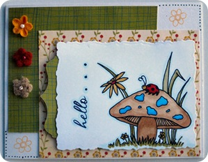 10810 Lexi mushroom ladybug cards