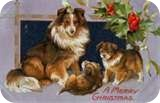 122509 thumbnailCAC4712C vintage christmas card dogs