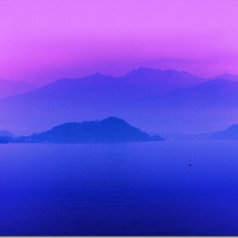 fog morning / landscape wallpaper