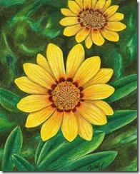 Yellow-Flower-Sketch
