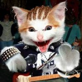 cat_rock