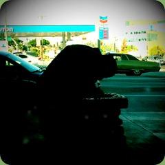 shot_1289603048379