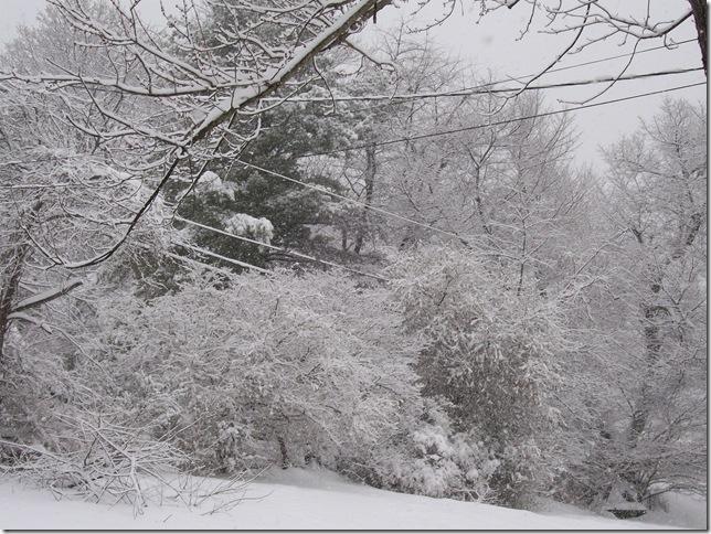 snow-Kev 2010-02-06 043