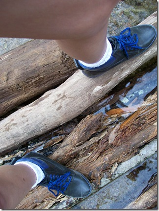 took a hike162