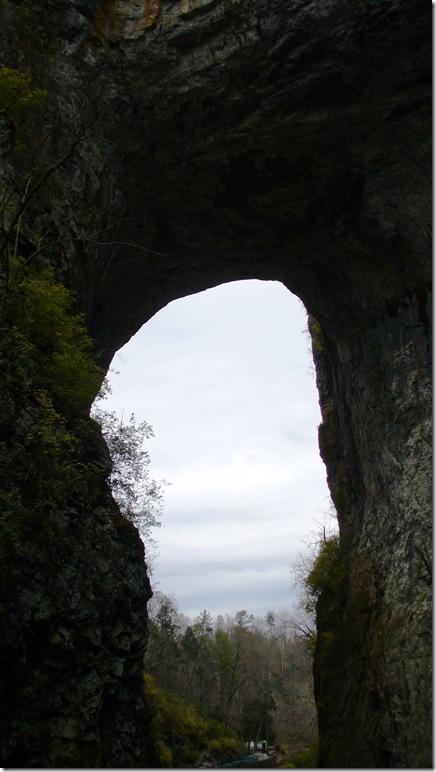2010-11-24 058