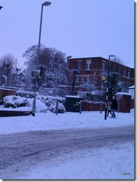 20 Dec2010, a date to remember, heaviest & thickest snow I have ever encountered in the UK thus far.