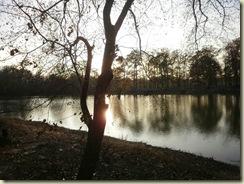 Jackson MS state park dec22 015