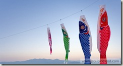 Fish_ROW919673108
