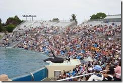 May June 2009 vacation212