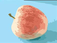 apple (convertida em www.roitsystems.com)