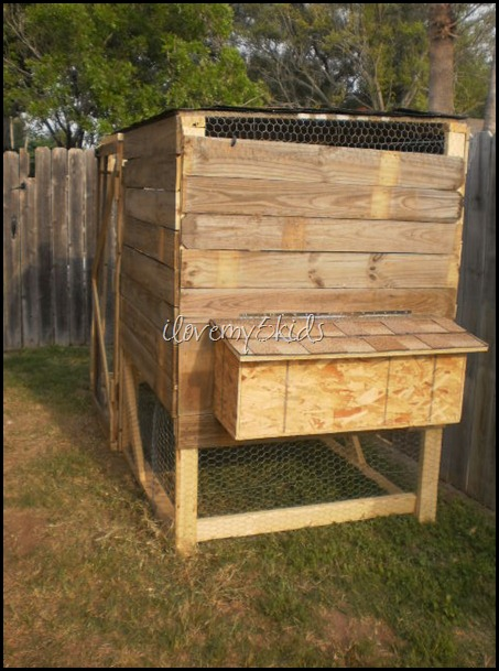 Chicken Coop made with Old Fence Boards