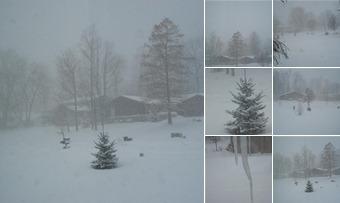 View Snow Storm 12-13-2010