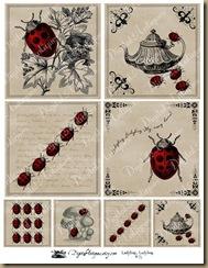 ladybugweb1