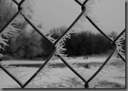 cold01062010-1