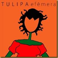 efemera-tulipa-ruiz