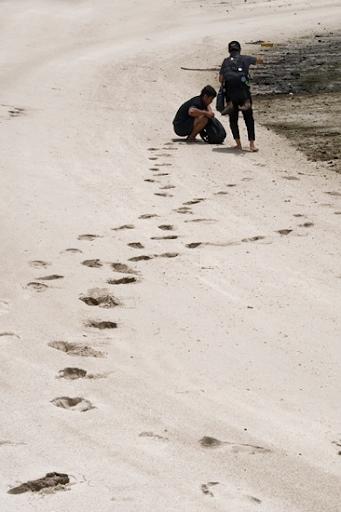 Jejak Langkah