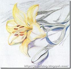 FLOWER%20(2005%20-%202009)%20LIZ
