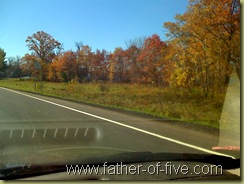 Fall colors along the road