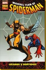 Spider Team 14