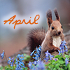 April squirrel by magic_art