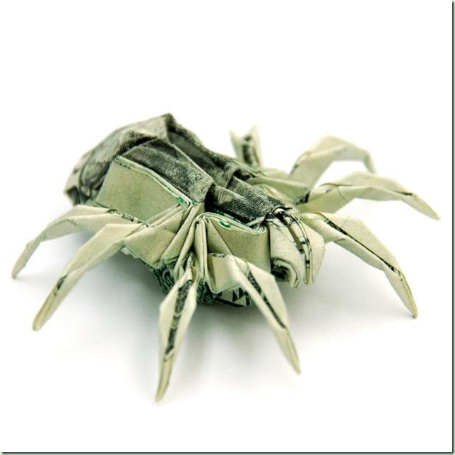 Two_Dollar_Spider_by_orudorumagi11