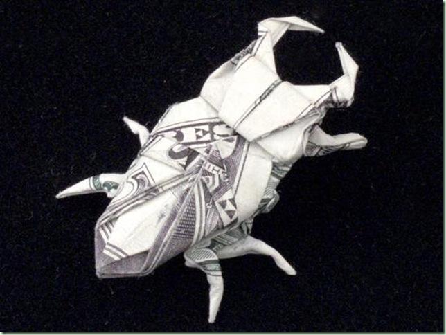 One_Dollar_Stag_Beetle_by_orudorumagi11