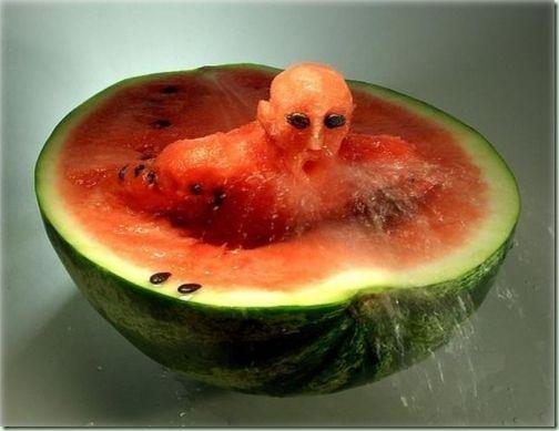 Frutas & Verduras (12)