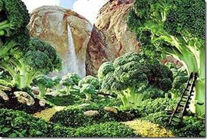 Legumes e Vegetais (5)