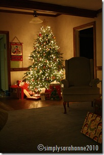 Christmas20103rdSnow2010 020