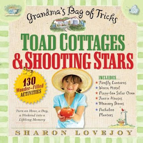 Toad Cottages and Shooting Stars A Grandma's Bag of Tricks