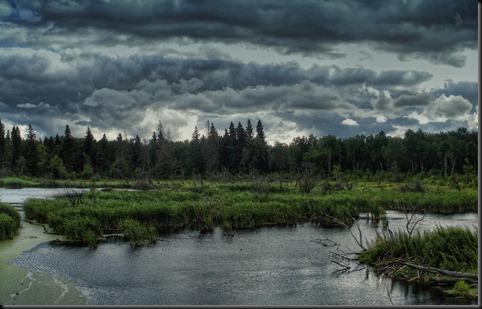 the-marsh-1680-1050 (1)