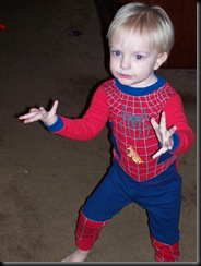 Spider---Boy-spider-man-637827_1440_1920