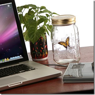 e70c_electronic_butterfly_in_a_jar_desk