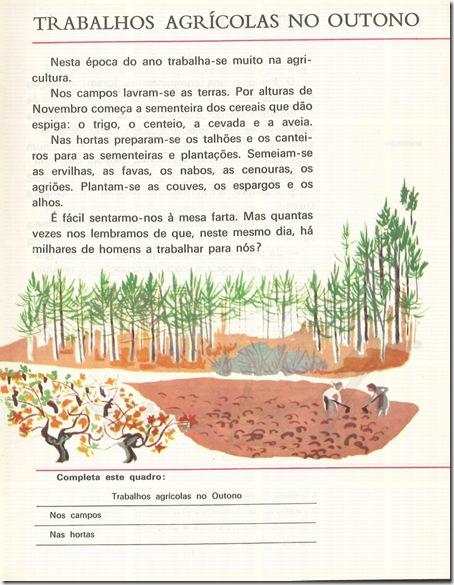 trabalhos agricolas outono livro segunda classe sn2