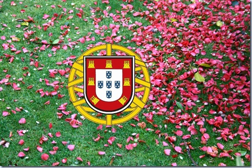 bandeira_portugal_sn