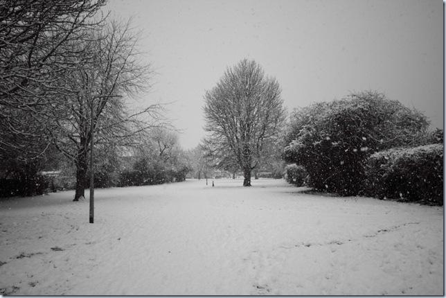 roding_snow5