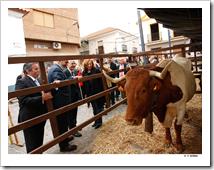 El presidente de Castilla-La Mancha, José María Barreda, acompañado de su esposa, Clementina Díez de Baldeón, asistió a la apertura de las II Jornadas Culturales para la Recuperación de la Feria de Ganado de Marzo, en Almodóvar del Campo.