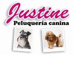 peluqueria canina en buenos aires argentina
