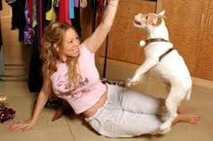 mariah carey su perro