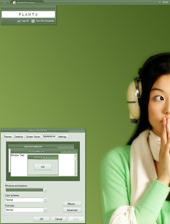 Planta,windows style xp theme  download,visual styles,xp佈景主題vista教學下載