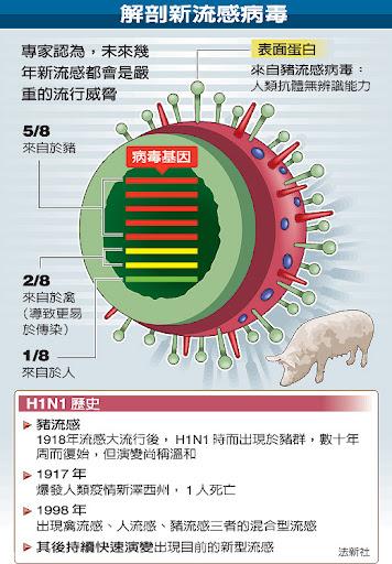 解剖新流感病毒 看H1N1歷史