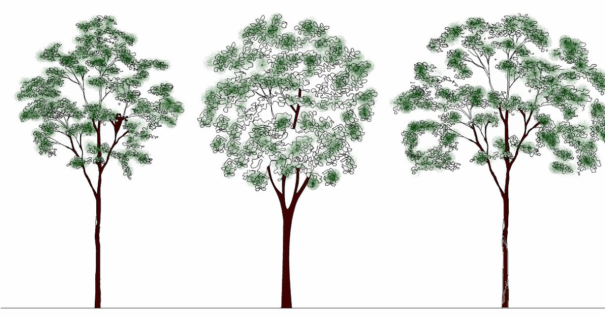 cad software 2d and 3d computer aided design autodesk