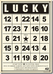 BC199 Lucky Bingo Card